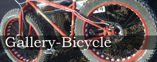 gall-bicycle